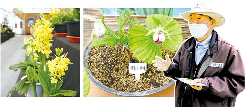 365일고와라… 행복씨앗 뿌려 사랑이꽃피는 고운식물원