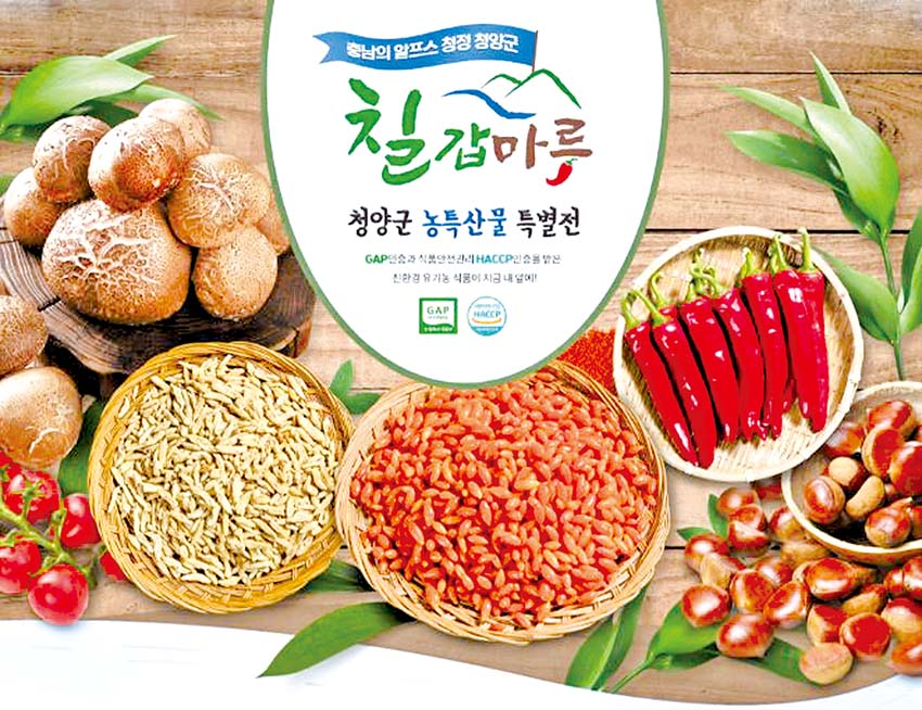청양군, 온라인 쇼핑몰 '칠갑마루' 특별전
