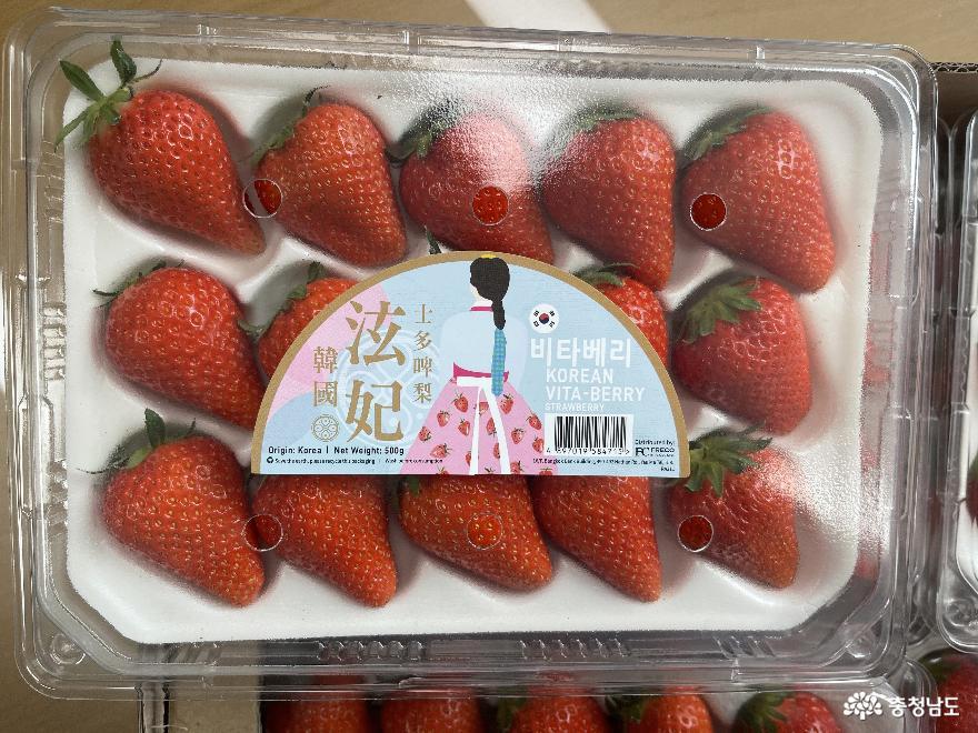 '수출 딸기 소포장재'…신선도 유지 마케팅 공략