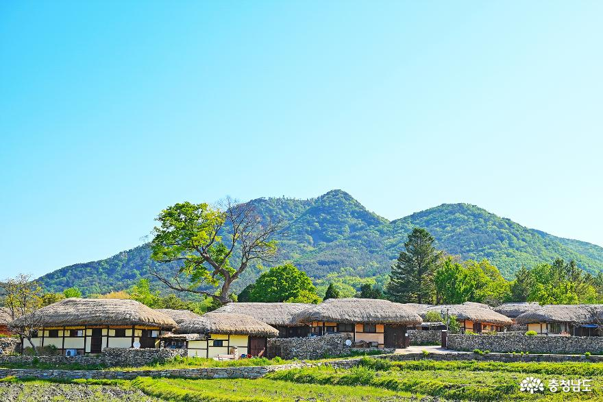아산여행 한국 관광 100선 500년 전통의 외암민속마을