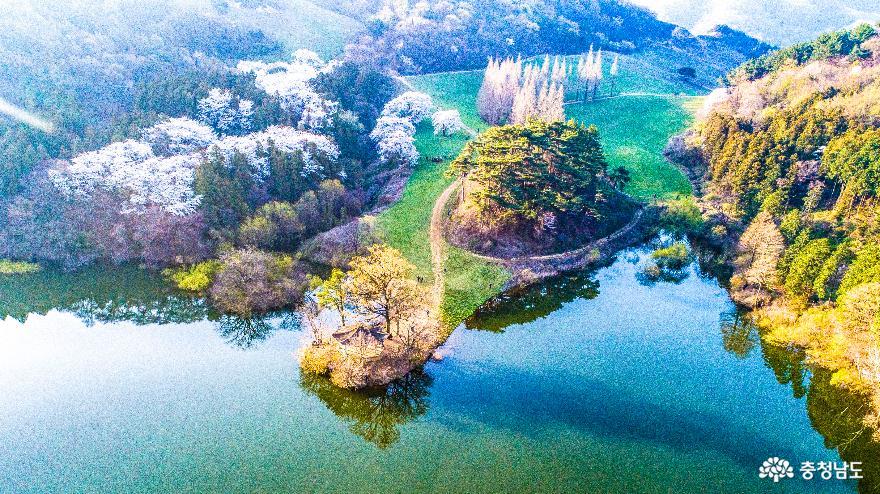 충남의 비경, 서산 '용비지의 봄' 풍경