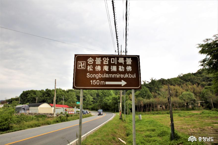 부처를 향해 뻗은 노송으로 유명한 논산 송불암