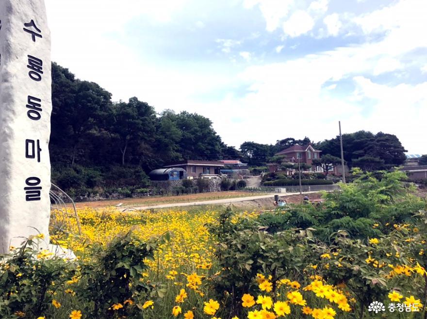 마을공동체 사업에 열심인 수룡동마을 사람들