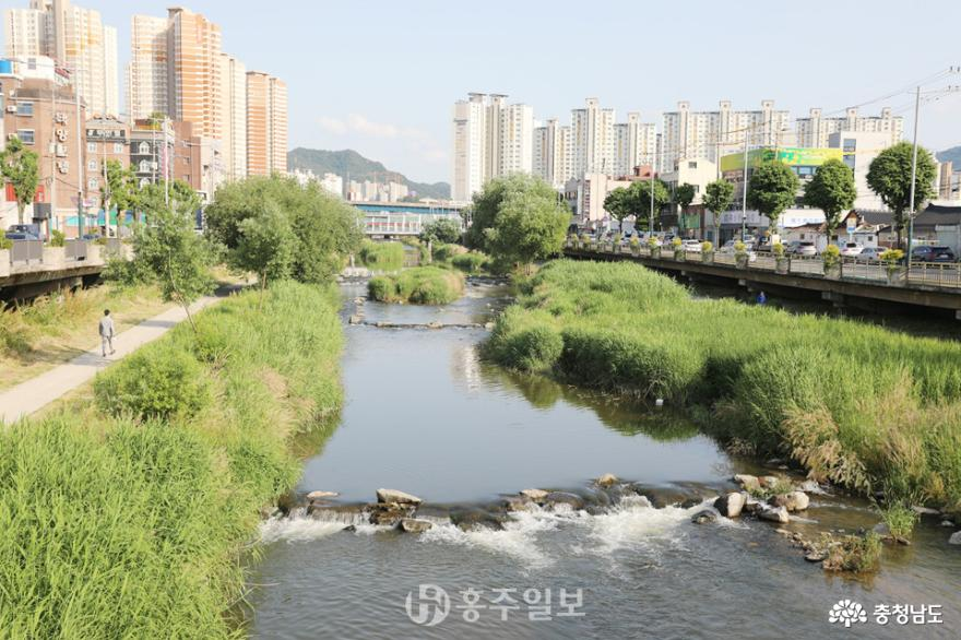 테마하천 광주천, 생명과 문화예술의 물길 흐른다