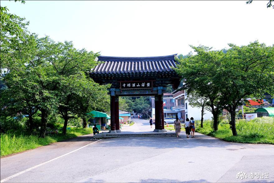 충남 가볼만한곳 석조미륵보살입상 논산 관촉사