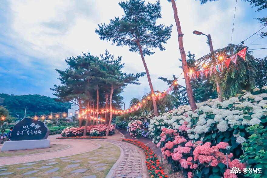 밤의피크닉, 공주유구색동정원의 색다른 모습