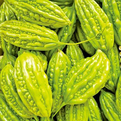 홍성에서 아열대 채소 재배한다