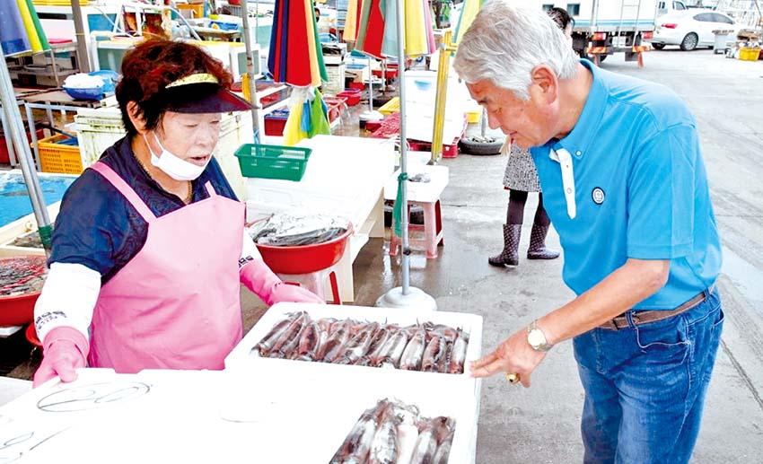 태안 오징어, 하루 15만 마리 '대풍'