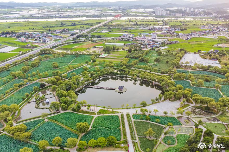 부여 서동연꽃축제가 취소된 서동공원 풍경