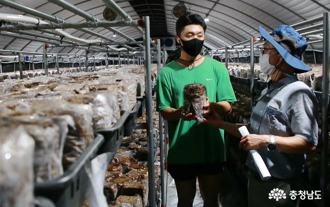 청양 표고버섯 청년 농가 컨설팅 교육 '도움'