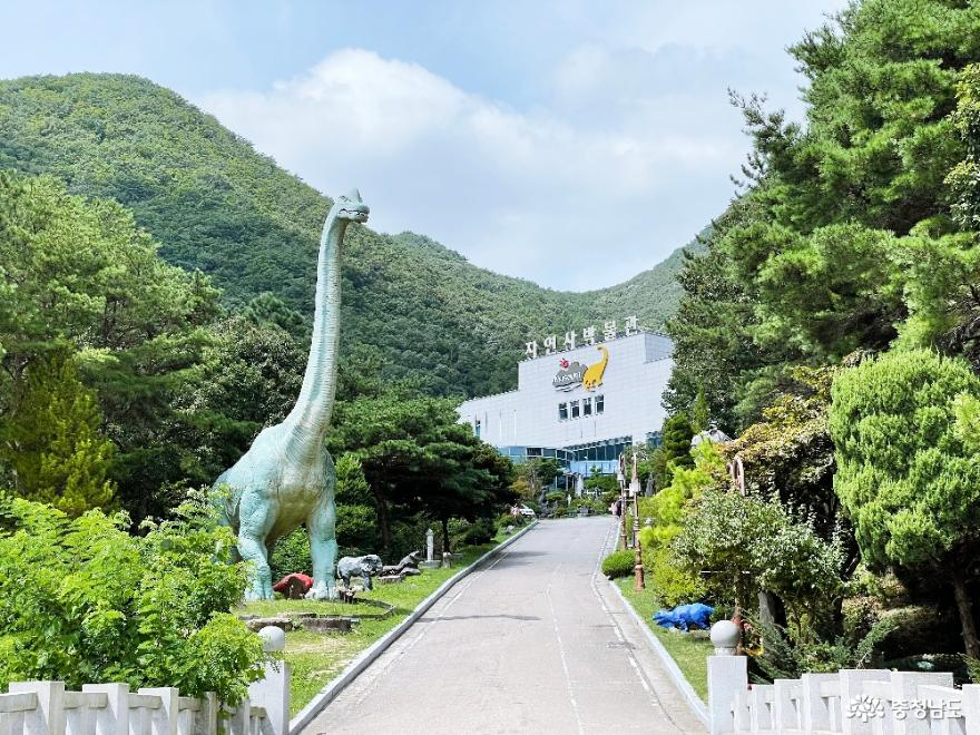 공주 계룡산 자연사박물관 교육과 체험을 동시에!