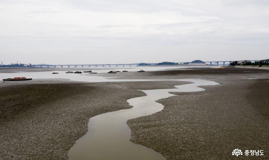 행담도 일대 갯벌 '세계자연유산' 등재될까