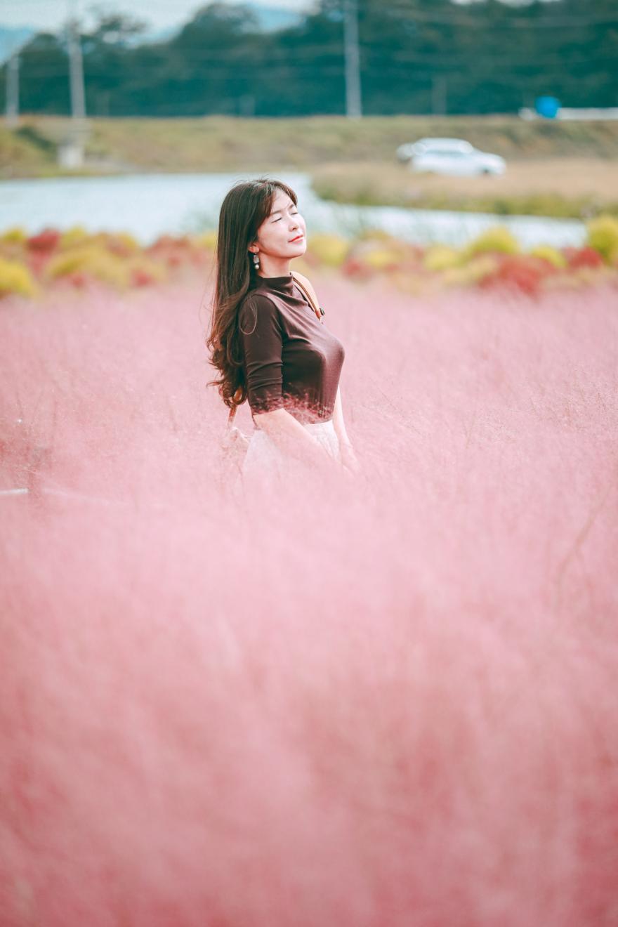 핑크뮬리의 바다& 댑싸리와 인생사진 남기는 꿀팁 알려드려요! 공주유구핑크뮬리정원