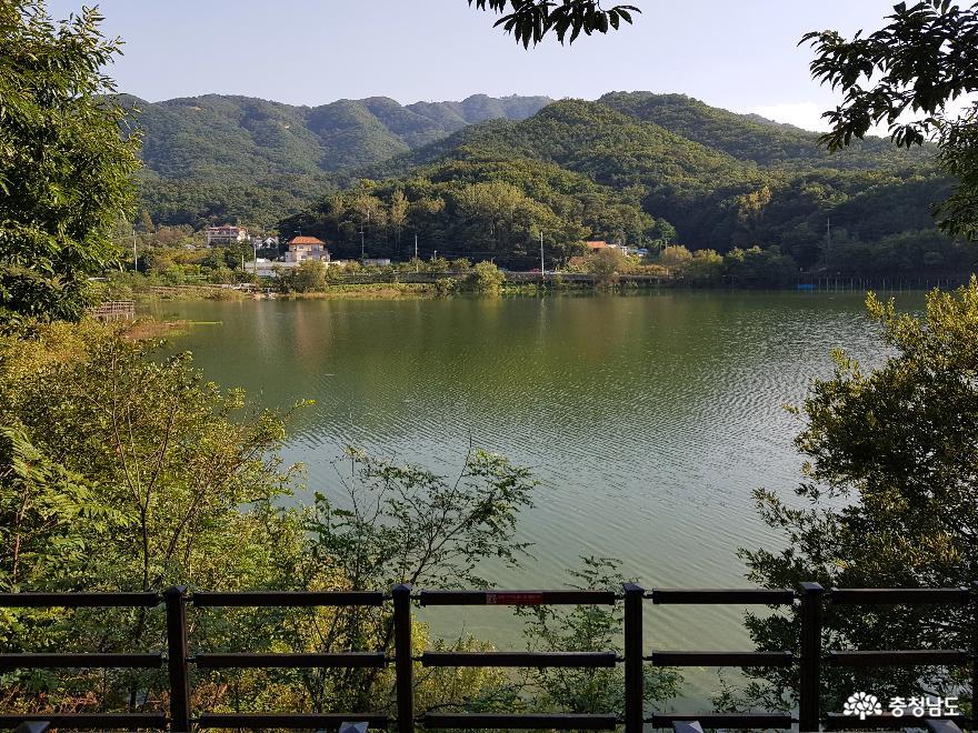 가을날 산책하기 좋은 곳, 천흥저수지 & 천흥리 마을