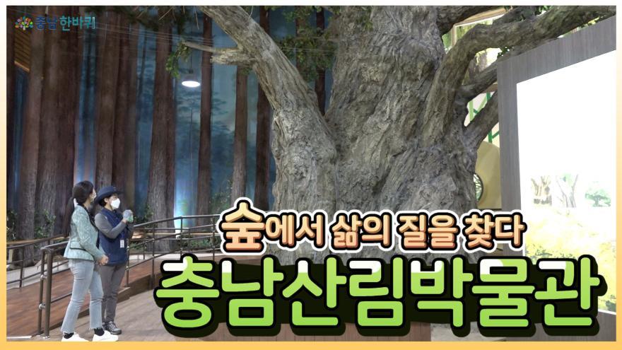 """[충남한바퀴] """"숲에서 삶의 질을 찾다"""" 충남산림박물관"""