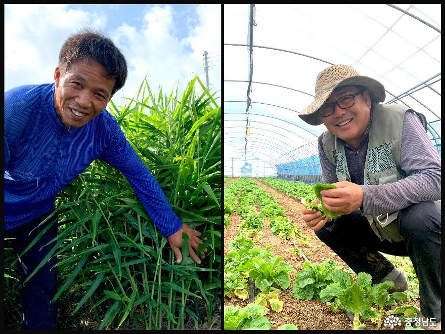 올해 농산물 가격 안정시스템 전격 가동