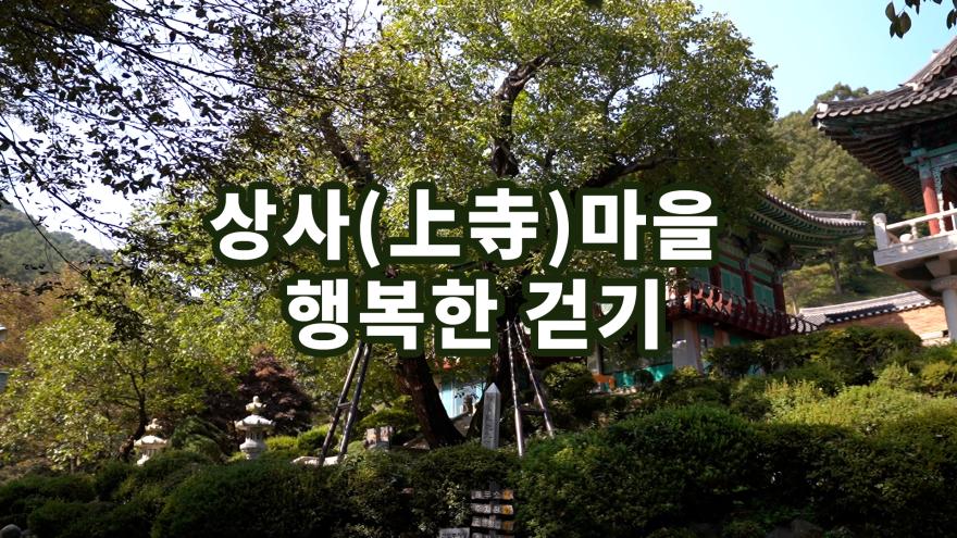 천안 호두나무 전래지 광덕사 행복한 걷기