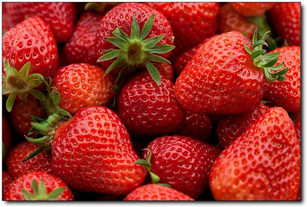 [논산-딸기]봄을 사로잡는 달콤한 딸기향이 가득